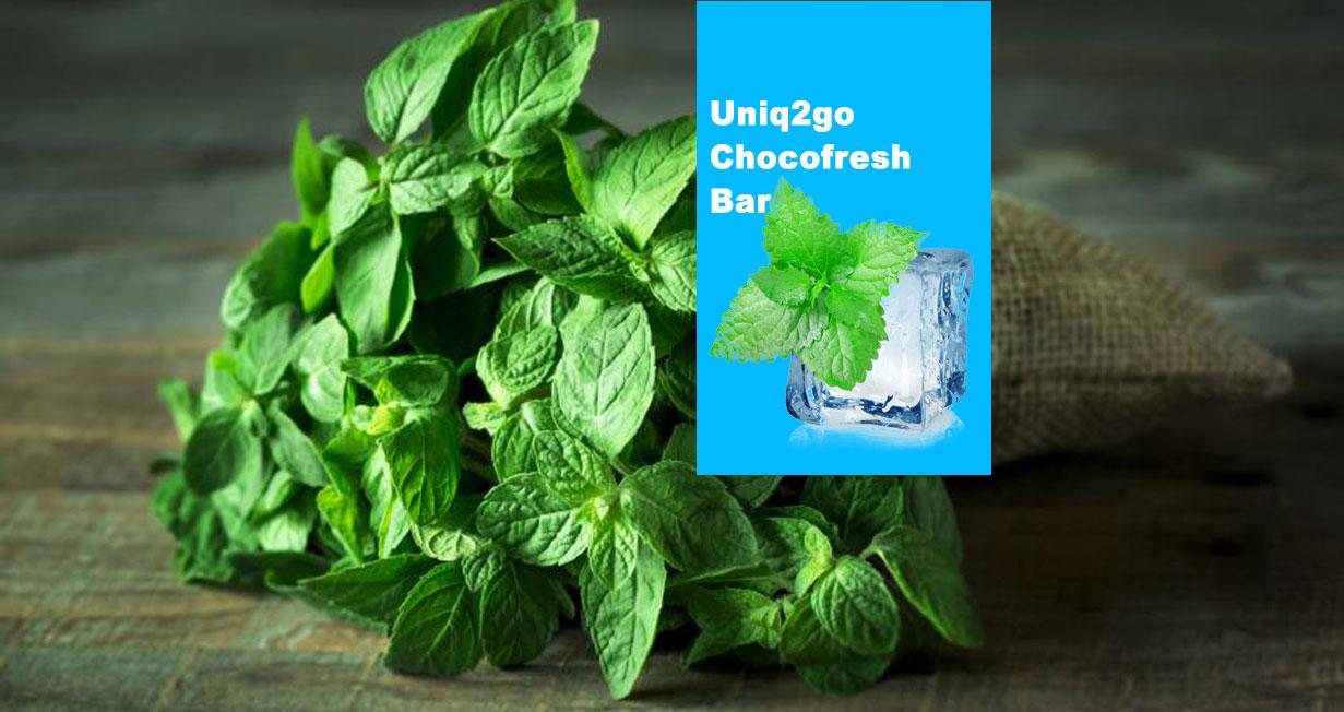 Chocofresh bar mint freshness